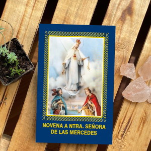 Novena a  Virgen de las...